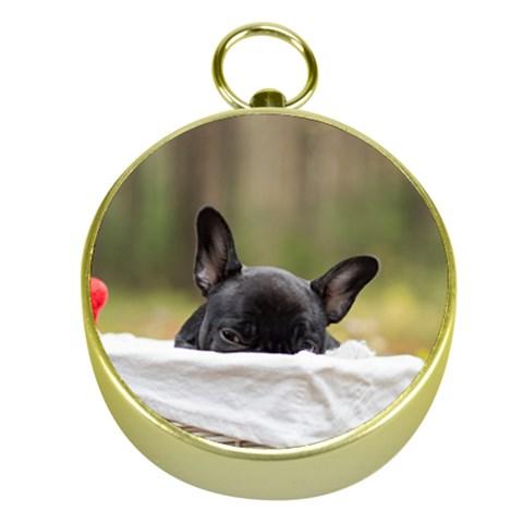 French Bulldog Peeking Puppy Gold Compasses