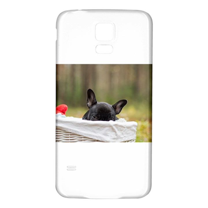 French Bulldog Peeking Puppy Samsung Galaxy S5 Back Case (White)