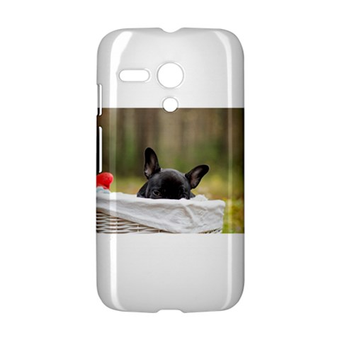 French Bulldog Peeking Puppy Motorola Moto G