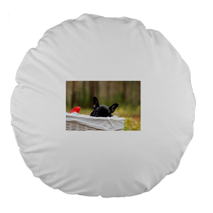 French Bulldog Peeking Puppy Large 18  Premium Flano Round Cushions