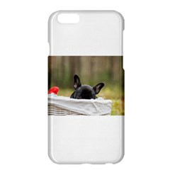 French Bulldog Peeking Puppy Apple iPhone 6 Plus/6S Plus Hardshell Case