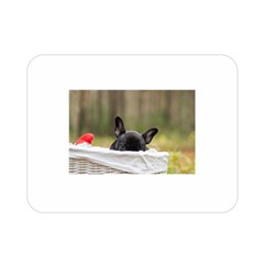 French Bulldog Peeking Puppy Double Sided Flano Blanket (Mini)