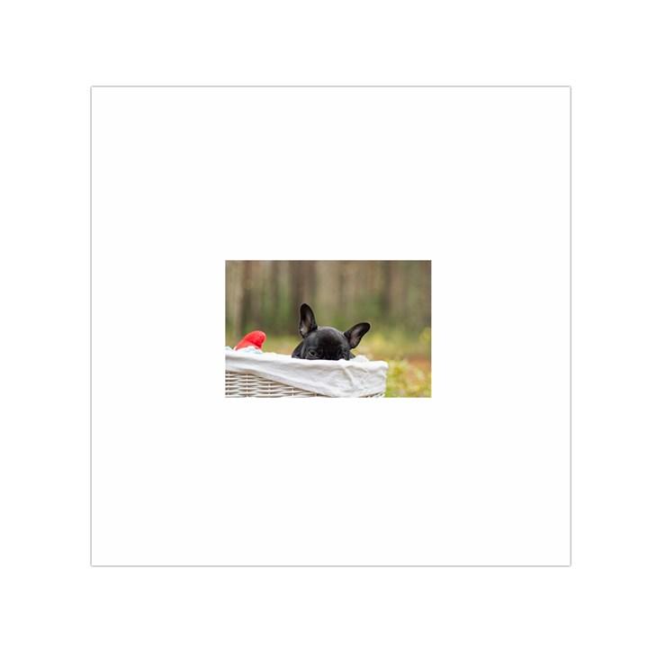 French Bulldog Peeking Puppy Small Satin Scarf (Square)