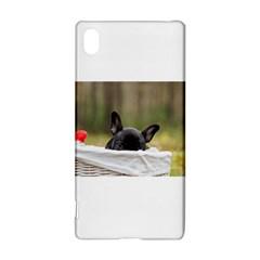 French Bulldog Peeking Puppy Sony Xperia Z3+