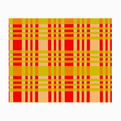 Check Pattern Small Glasses Cloth (2-Side)