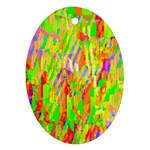 Cheerful Phantasmagoric Pattern Oval Ornament (Two Sides) Back