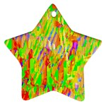 Cheerful Phantasmagoric Pattern Star Ornament (Two Sides)  Front