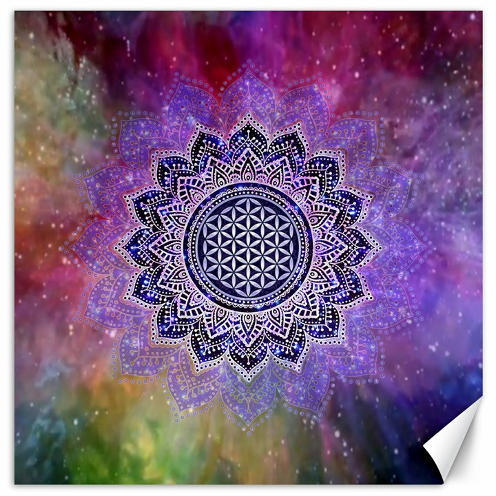 Flower Of Life Indian Ornaments Mandala Universe Canvas 12  x 12