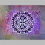 Flower Of Life Indian Ornaments Mandala Universe Mini Canvas 6  x 4  6  x 4  x 0.875  Stretched Canvas