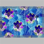 Purple Flowers Canvas 18  x 12  18  x 12  x 0.875  Stretched Canvas