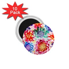 Colorful Succulents 1 75  Magnets (10 Pack)