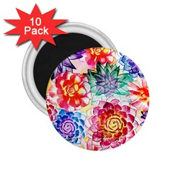 Colorful Succulents 2 25  Magnets (10 Pack)