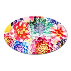 Colorful Succulents Oval Magnet