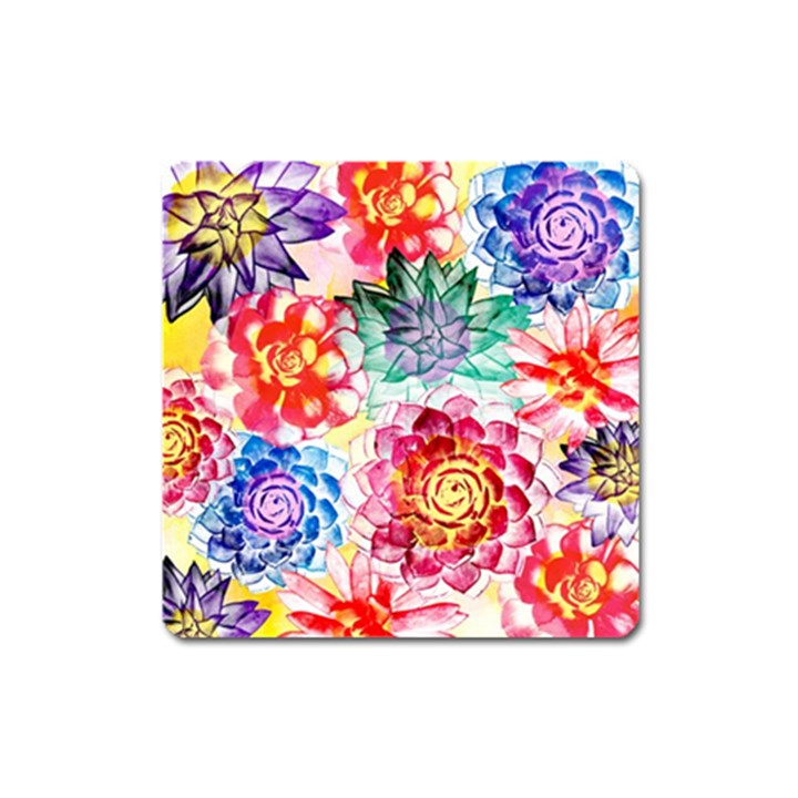 Colorful Succulents Square Magnet