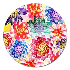 Colorful Succulents Magnet 5  (round)