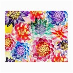 Colorful Succulents Small Glasses Cloth Front