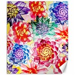 Colorful Succulents Canvas 8  x 10  10.02 x8 Canvas - 1