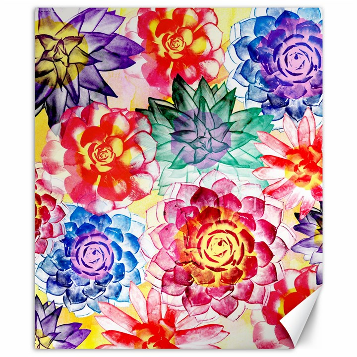 Colorful Succulents Canvas 8  x 10