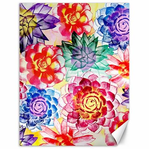 Colorful Succulents Canvas 18  x 24
