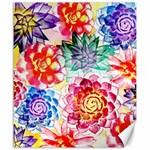 Colorful Succulents Canvas 20  x 24   24 x20 Canvas - 1