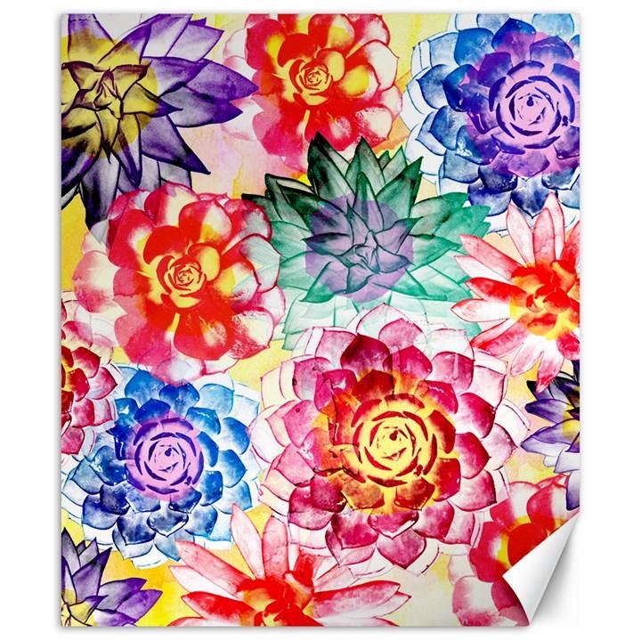 Colorful Succulents Canvas 20  x 24