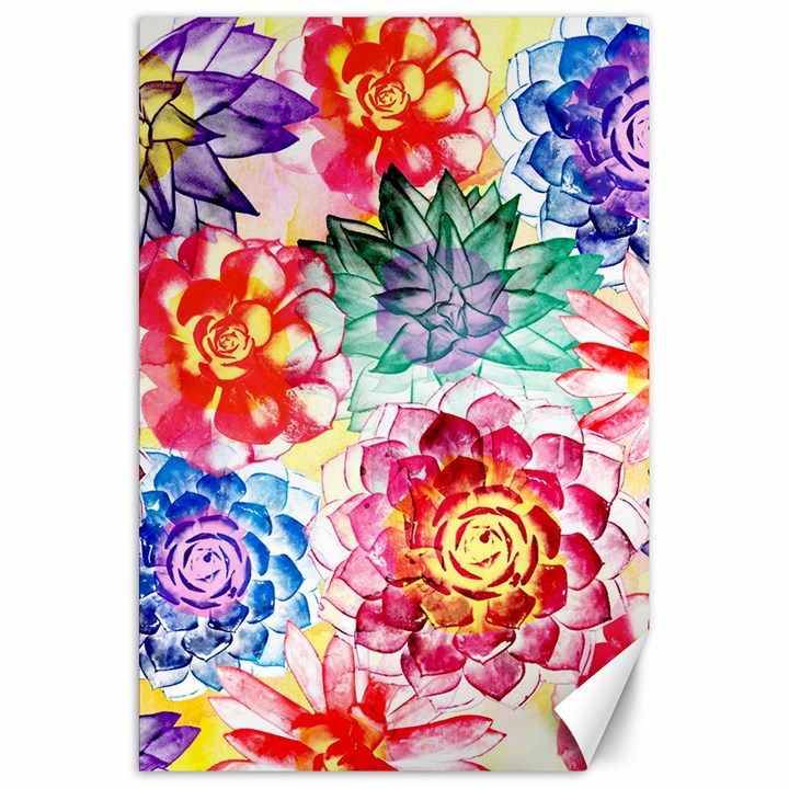 Colorful Succulents Canvas 20  x 30