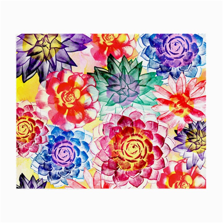 Colorful Succulents Small Glasses Cloth (2-Side)