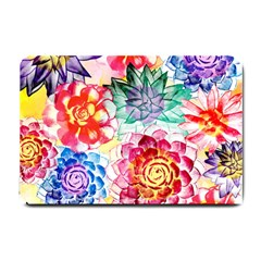 Colorful Succulents Small Doormat