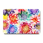 Colorful Succulents Small Doormat  24 x16 Door Mat - 1
