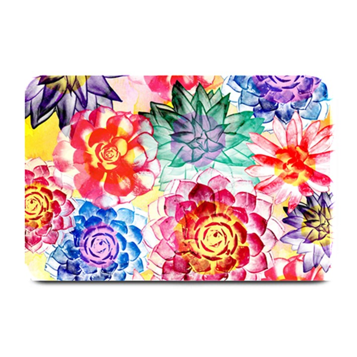 Colorful Succulents Plate Mats