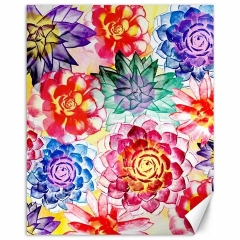 Colorful Succulents Canvas 11  x 14