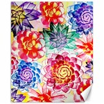 Colorful Succulents Canvas 11  x 14   14 x11 Canvas - 1