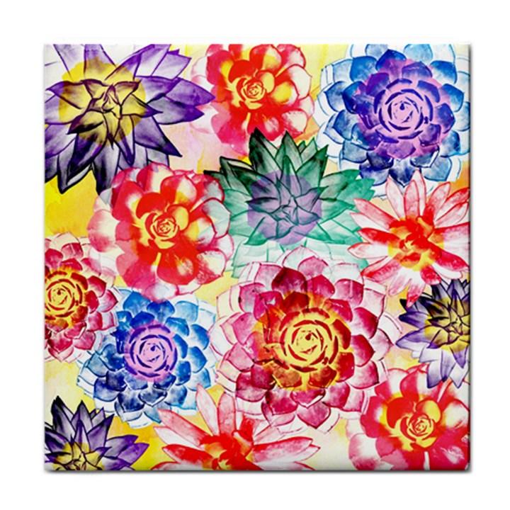 Colorful Succulents Face Towel