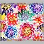 Colorful Succulents Canvas 24  x 20  24  x 20  x 0.875  Stretched Canvas
