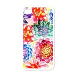 Colorful Succulents Apple iPhone 4 Case (White) Front