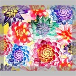 Colorful Succulents Deluxe Canvas 24  x 20   24  x 20  x 1.5  Stretched Canvas