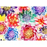 Colorful Succulents THANK YOU 3D Greeting Card (7x5) Back