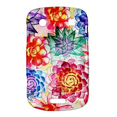 Colorful Succulents Bold Touch 9900 9930