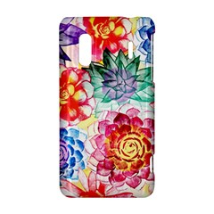 Colorful Succulents HTC Evo Design 4G/ Hero S Hardshell Case