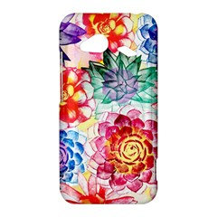 Colorful Succulents HTC Droid Incredible 4G LTE Hardshell Case