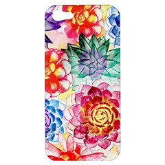 Colorful Succulents Apple iPhone 5 Hardshell Case