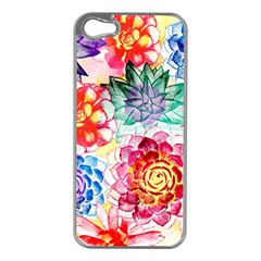 Colorful Succulents Apple iPhone 5 Case (Silver)