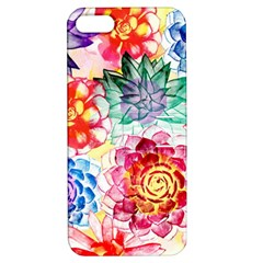 Colorful Succulents Apple iPhone 5 Hardshell Case with Stand