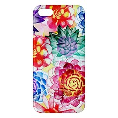 Colorful Succulents Apple Iphone 5 Premium Hardshell Case