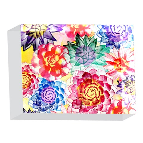 Colorful Succulents 5 x 7  Acrylic Photo Blocks