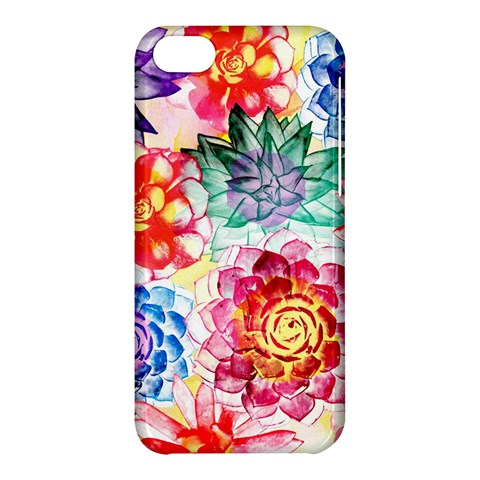 Colorful Succulents Apple iPhone 5C Hardshell Case