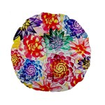 Colorful Succulents Standard 15  Premium Flano Round Cushions Back