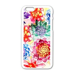 Colorful Succulents Apple Iphone 6/6s White Enamel Case