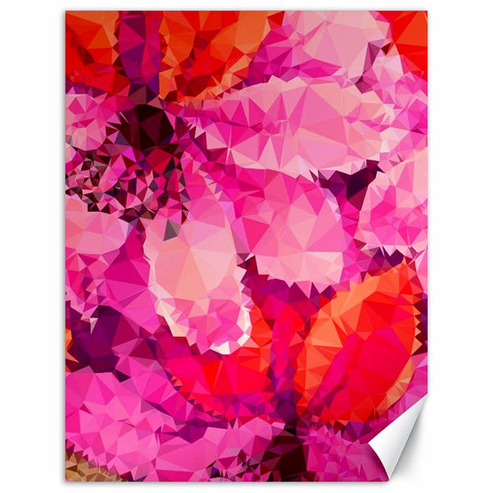 Geometric Magenta Garden Canvas 12  x 16