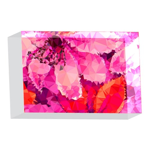 Geometric Magenta Garden 4 x 6  Acrylic Photo Blocks
